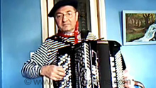accordionist for hire